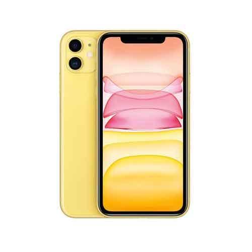 Apple iPhone 11 256GB MHDT3HNA price in Chennai, hyderabad