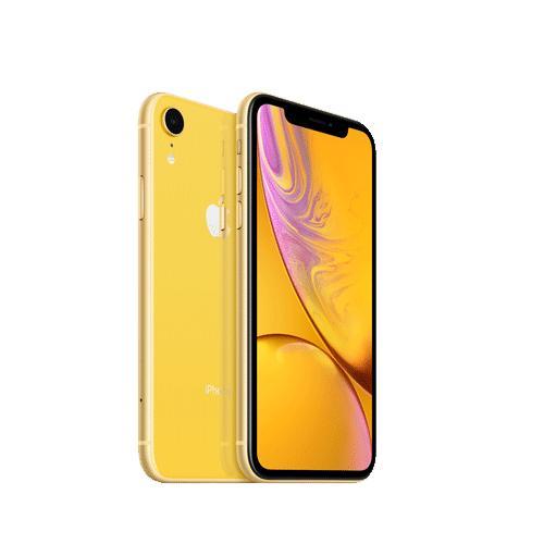 Apple iPhone XR 64GB MH6Q3HNA price in Chennai, hyderabad